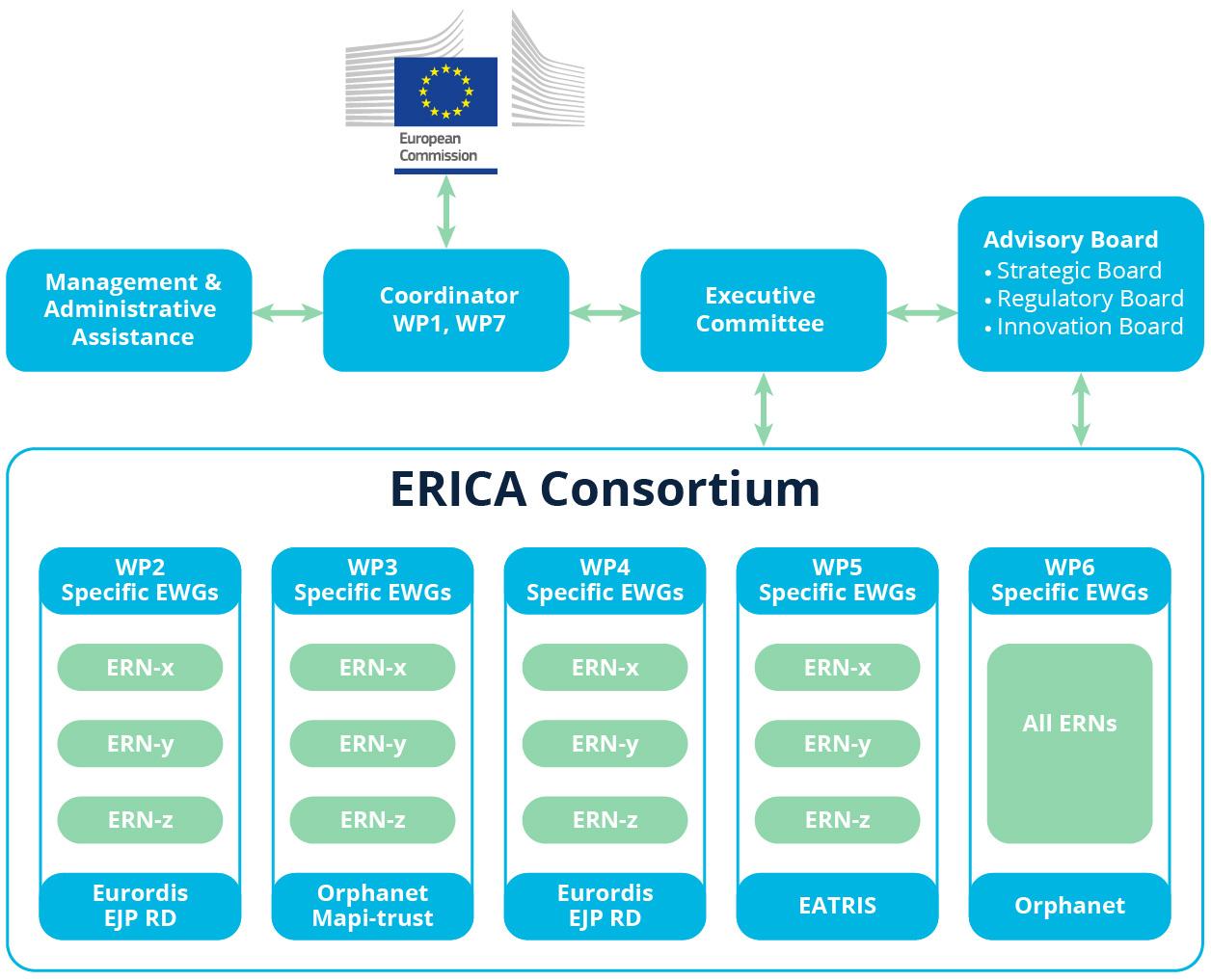 ERICA Governance